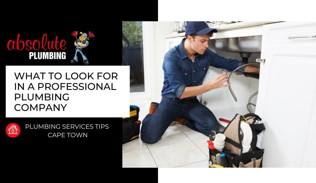 What To Look For In A Professional Plumbing Company